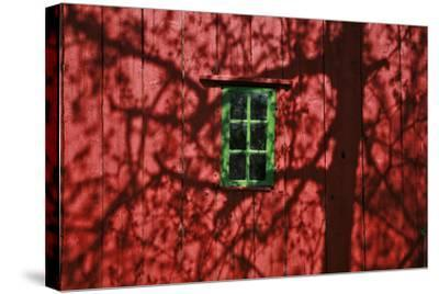 Barn, Red, Green Window, Shadow of a Tree-Uwe Steffens-Stretched Canvas Print
