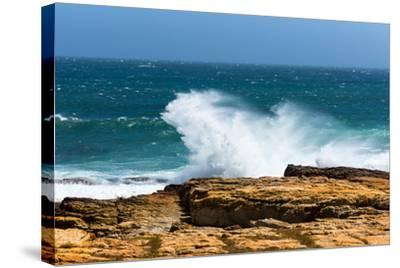 South Africa, the Cape of Good Hope, Foam-Catharina Lux-Stretched Canvas Print