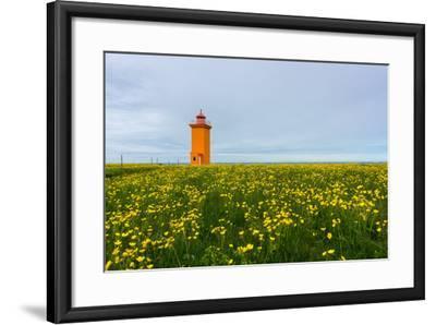 Iceland, Peninsula Reykjanes, Lighthouse-Catharina Lux-Framed Photographic Print