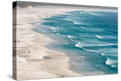 South Africa, Cape Peninsula, Beach-Catharina Lux-Stretched Canvas Print