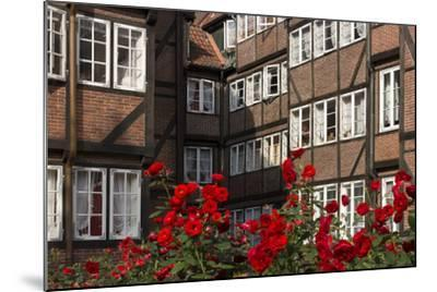 Hamburg, Neanderstrasse, Half-Timbered Houses, Facades, Flowers-Catharina Lux-Mounted Photographic Print