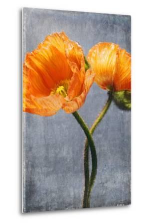 Poppy, Blossoms, Still Life-Axel Killian-Metal Print