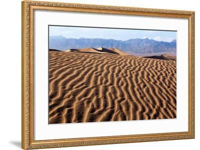 USA, Death Valley National Park, Mesquite Flat Sand Dunes-Catharina Lux-Framed Photographic Print