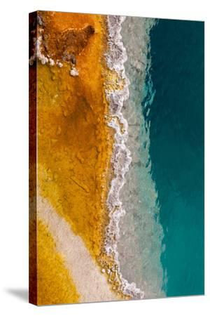 USA, Yellowstone National Park, West Thumb Geyser Basin, Black Pool-Catharina Lux-Stretched Canvas Print
