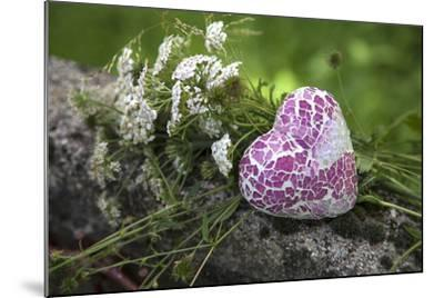 Heart, Flowers, Wild Chervil, Green-Andrea Haase-Mounted Photographic Print