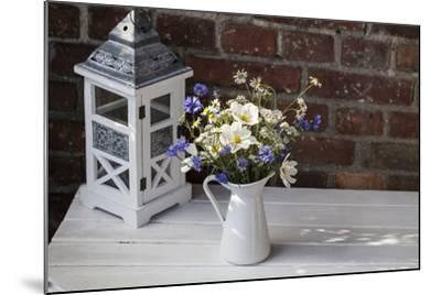 Bouquet, Summer Flowers, Lantern-Andrea Haase-Mounted Photographic Print