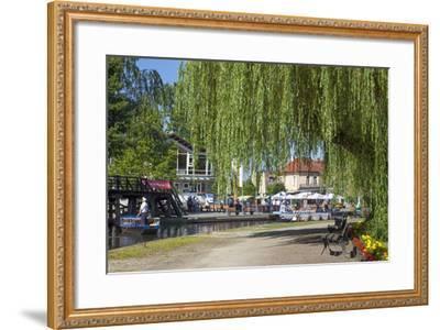 Europe, Germany, Brandenburg, Spreewald (Spree Forest), L?bbenau, Harbour Promenade, Weeping Willow-Chris Seba-Framed Photographic Print