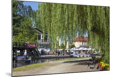 Europe, Germany, Brandenburg, Spreewald (Spree Forest), L?bbenau, Harbour Promenade, Weeping Willow-Chris Seba-Mounted Photographic Print