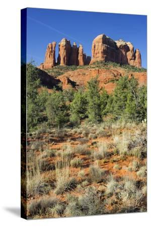 Cathedral Rock, Sedona, Arizona, Usa-Rainer Mirau-Stretched Canvas Print