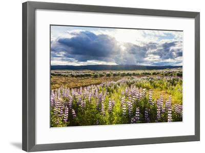 At the Hjalparfoss-Catharina Lux-Framed Photographic Print