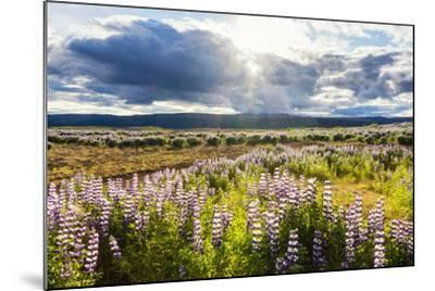 At the Hjalparfoss-Catharina Lux-Mounted Photographic Print