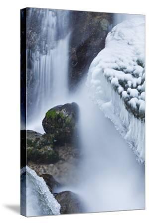 Austria, Lower Austria, MirafŠlle (Waterfall), Winter-Rainer Mirau-Stretched Canvas Print