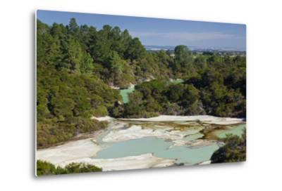 Wai-O-Tapu Thermal Wonderland, Bay of Plenty, North Island, New Zealand-Rainer Mirau-Metal Print