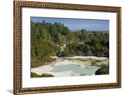 Wai-O-Tapu Thermal Wonderland, Bay of Plenty, North Island, New Zealand-Rainer Mirau-Framed Photographic Print