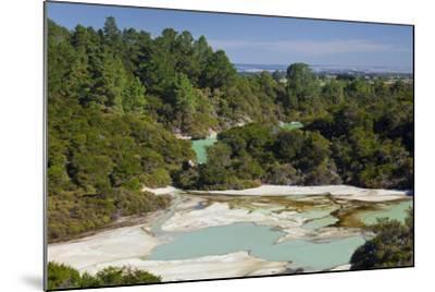 Wai-O-Tapu Thermal Wonderland, Bay of Plenty, North Island, New Zealand-Rainer Mirau-Mounted Photographic Print