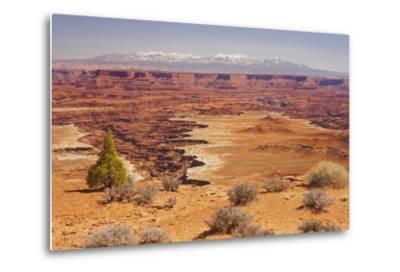Shafer Trail Overlook, Canyonlands National Park, La Sal Mountains, Utah, Usa-Rainer Mirau-Metal Print