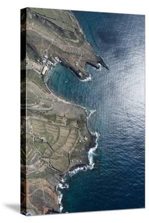 Tenerife, El Puertito, La Caleta, Costa Adeje, Volcano Coast-Frank Fleischmann-Stretched Canvas Print