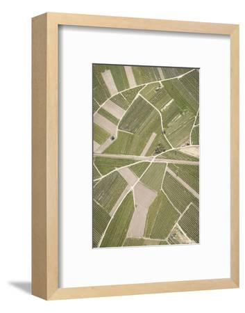 Nature, Landscape, Val Sulgana, Railway, Aerial Shot, Meadow, Fields, Way, Wine-Growing, Summer-Frank Fleischmann-Framed Photographic Print