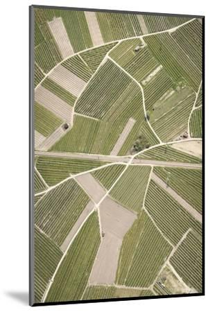 Nature, Landscape, Val Sulgana, Railway, Aerial Shot, Meadow, Fields, Way, Wine-Growing, Summer-Frank Fleischmann-Mounted Photographic Print
