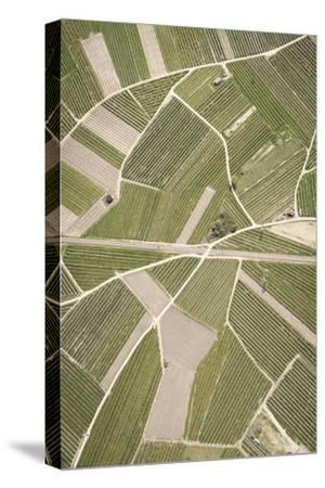 Nature, Landscape, Val Sulgana, Railway, Aerial Shot, Meadow, Fields, Way, Wine-Growing, Summer-Frank Fleischmann-Stretched Canvas Print