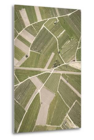 Nature, Landscape, Val Sulgana, Railway, Aerial Shot, Meadow, Fields, Way, Wine-Growing, Summer-Frank Fleischmann-Metal Print