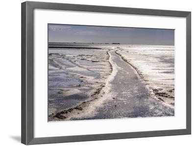 Germany, Schleswig-Holstein, North Frisia, North Frisian Marsh, Ockholm-Udo Siebig-Framed Photographic Print
