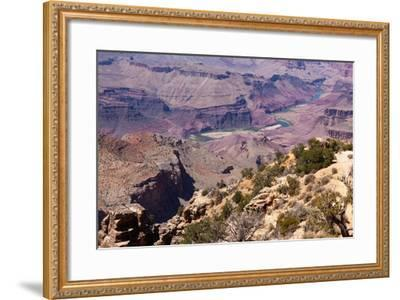 USA, Grand Canyon National Park, Desert View-Catharina Lux-Framed Photographic Print