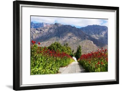 South Africa, Hex River Valley-Catharina Lux-Framed Photographic Print