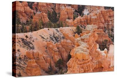 Inspiration Point, Hoodoos, Bryce Canyon, Utah, Usa-Rainer Mirau-Stretched Canvas Print