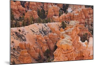 Inspiration Point, Hoodoos, Bryce Canyon, Utah, Usa-Rainer Mirau-Mounted Photographic Print