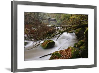 Germany, Rhineland-Palatinate, Eifel, River, Rapids of the Pr?m with Irrel-Andreas Keil-Framed Photographic Print