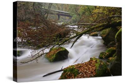 Germany, Rhineland-Palatinate, Eifel, River, Rapids of the Pr?m with Irrel-Andreas Keil-Stretched Canvas Print