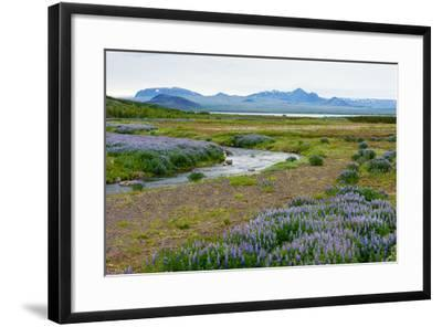 On the Way on the Golden Circle-Catharina Lux-Framed Photographic Print