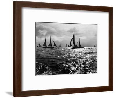 Skipjacks on the Chesapeake Bay Near Sharps Island-A. Aubrey Bodine-Framed Photographic Print