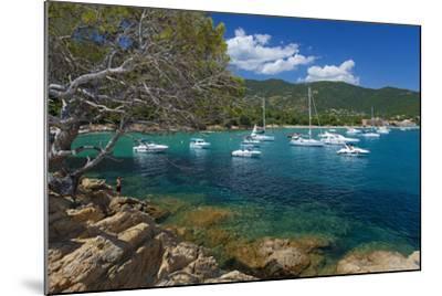 France, Cote D'Azur, Bathing Bay-Chris Seba-Mounted Photographic Print