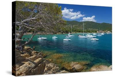 France, Cote D'Azur, Bathing Bay-Chris Seba-Stretched Canvas Print