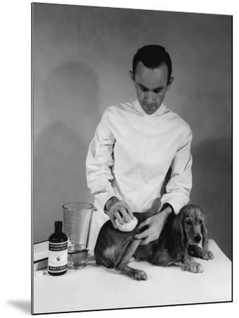 Vet and Dog-Edwin Levick-Mounted Photographic Print