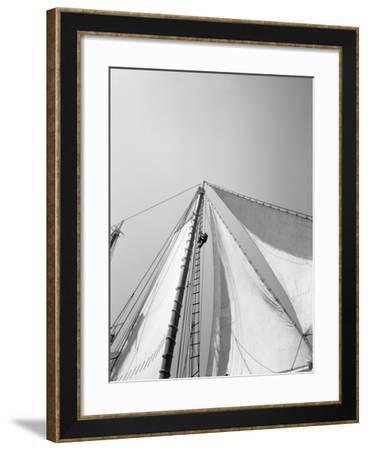 Edwin and Maud (Ram: 1900)-A. Aubrey Bodine-Framed Photographic Print