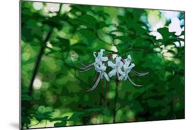 Wild Azaleas in the Mariners' Museum Park-Gregg Vicik-Mounted Giclee Print