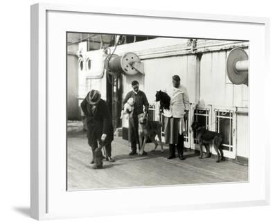 Pets on the Berengaria-Edwin Levick-Framed Photographic Print