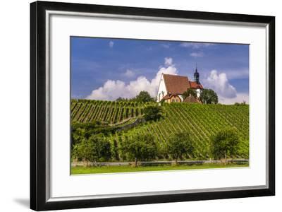 Germany, Bavaria, Lower Franconia, Mainfranken, Volkach, Pilgrimage Church Maria in the Vineyard-Udo Siebig-Framed Photographic Print