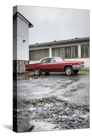 Hachenburg, Hesse, Germany, Cadillac Deville Convertible, 1969 Model, Cubic Capacity 7.0 L-Bernd Wittelsbach-Stretched Canvas Print