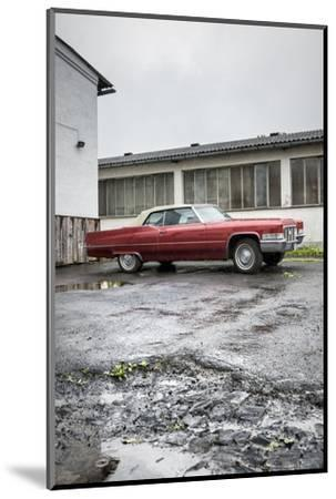 Hachenburg, Hesse, Germany, Cadillac Deville Convertible, 1969 Model, Cubic Capacity 7.0 L-Bernd Wittelsbach-Mounted Photographic Print