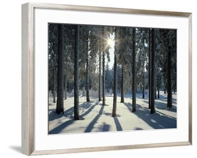 Way, Meadows, Mountains-Thonig-Framed Photographic Print