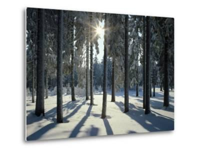 Way, Meadows, Mountains-Thonig-Metal Print