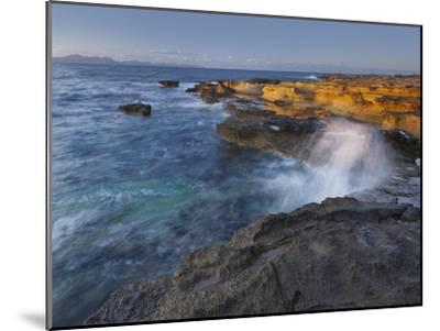Sandstone Coast at Betlem, Del Llevant Peninsula, Majorca, Spain-Rainer Mirau-Mounted Premium Photographic Print
