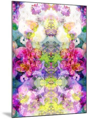 Multicolor Blossoms in Water Ornament Symmetri-Alaya Gadeh-Mounted Photographic Print