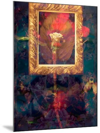 A Floral Montage from Roses in a Golden Frame-Alaya Gadeh-Mounted Photographic Print
