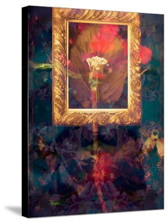 A Floral Montage from Roses in a Golden Frame-Alaya Gadeh-Stretched Canvas Print