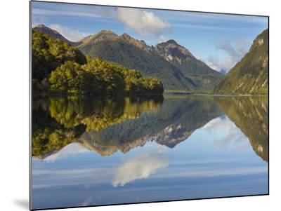 Lake Gunn, Fiordland National Park, Southland, South Island, New Zealand-Rainer Mirau-Mounted Photographic Print